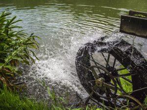 Wasserweisheiten – Redewendungen und ihre Bedeutung