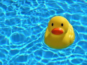 Wasserverbrauch von Pools