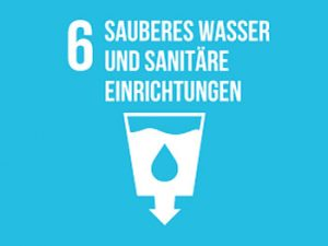 Bundespräsident Van der Bellen spricht auf Hochrangiger UN Wasserkonferenz am 18. März 2021