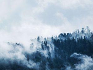 Nebel – was ist das eigentlich genau?