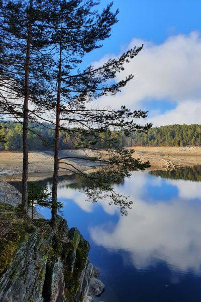 wunderschöne Spiegelung in einem See