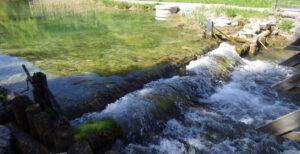 Hochwasserschutz Haselbach und Grieselbach